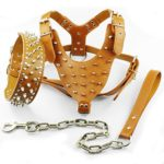 Dog Kingdom Spiked Studded Leather Dog Pet Collar Harness Leash 3pcs Set Walking Pitbull Boxer Brown L